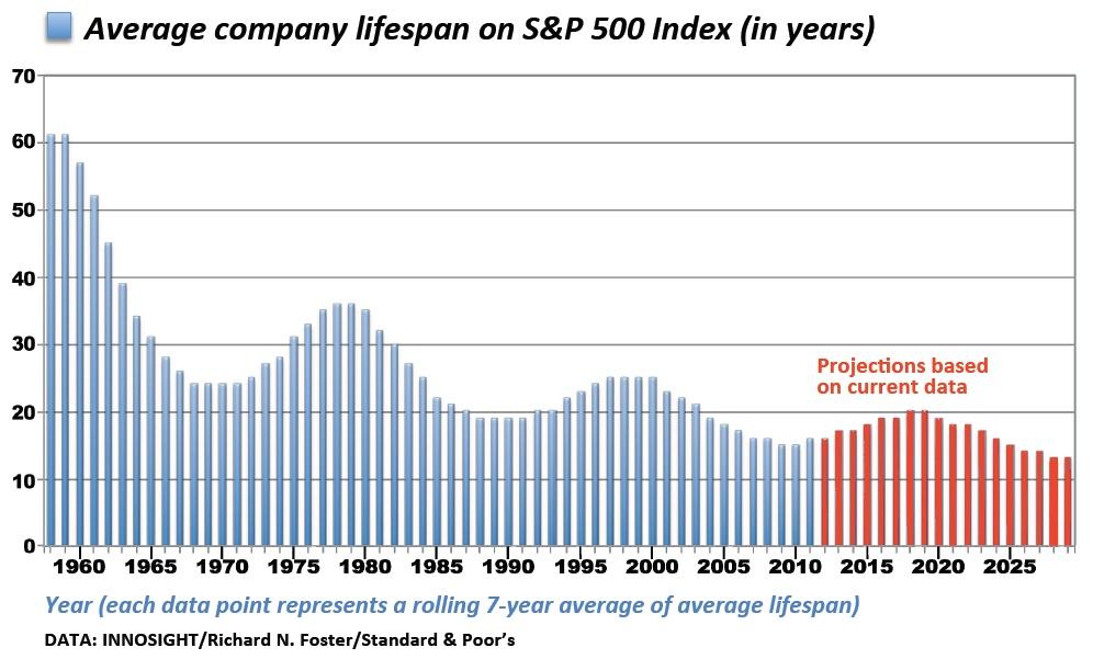Avg Company Lifespan