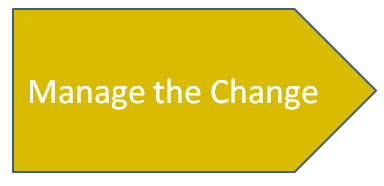 project management organizational change