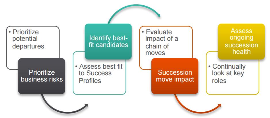 succession planning consult